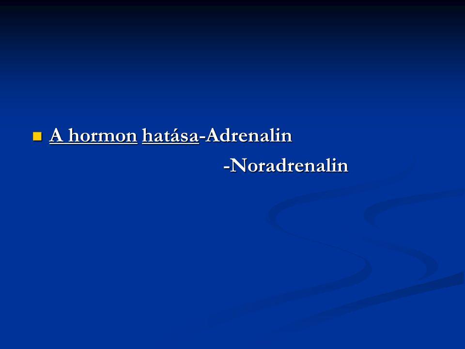 A hormon hatása-Adrenalin A hormon hatása-Adrenalin -Noradrenalin -Noradrenalin