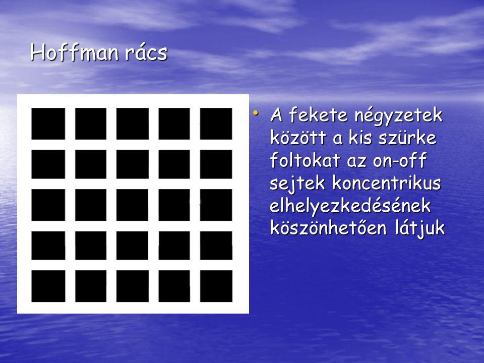 Hoffman rács A fekete négyzetek között a kis szürke foltokat az on-off sejtek koncentrikus elhelyezkedésének köszönhetően látjuk A fekete négyzetek kö