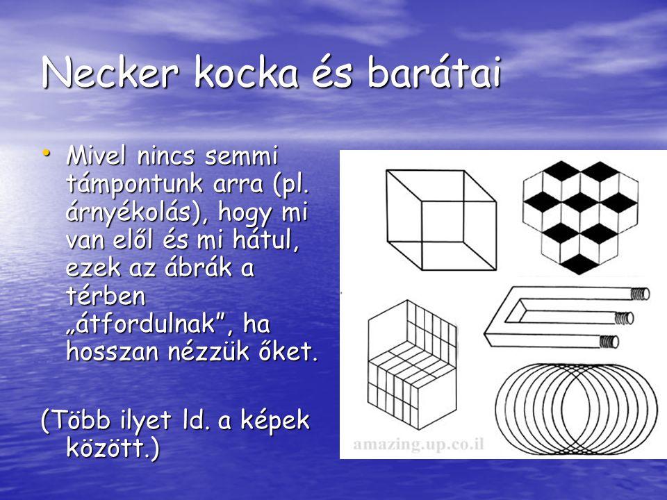 """Necker kocka és barátai Mivel nincs semmi támpontunk arra (pl. árnyékolás), hogy mi van elől és mi hátul, ezek az ábrák a térben """"átfordulnak"""", ha hos"""