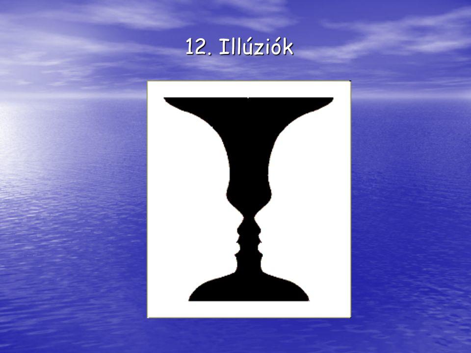 12. Illúziók