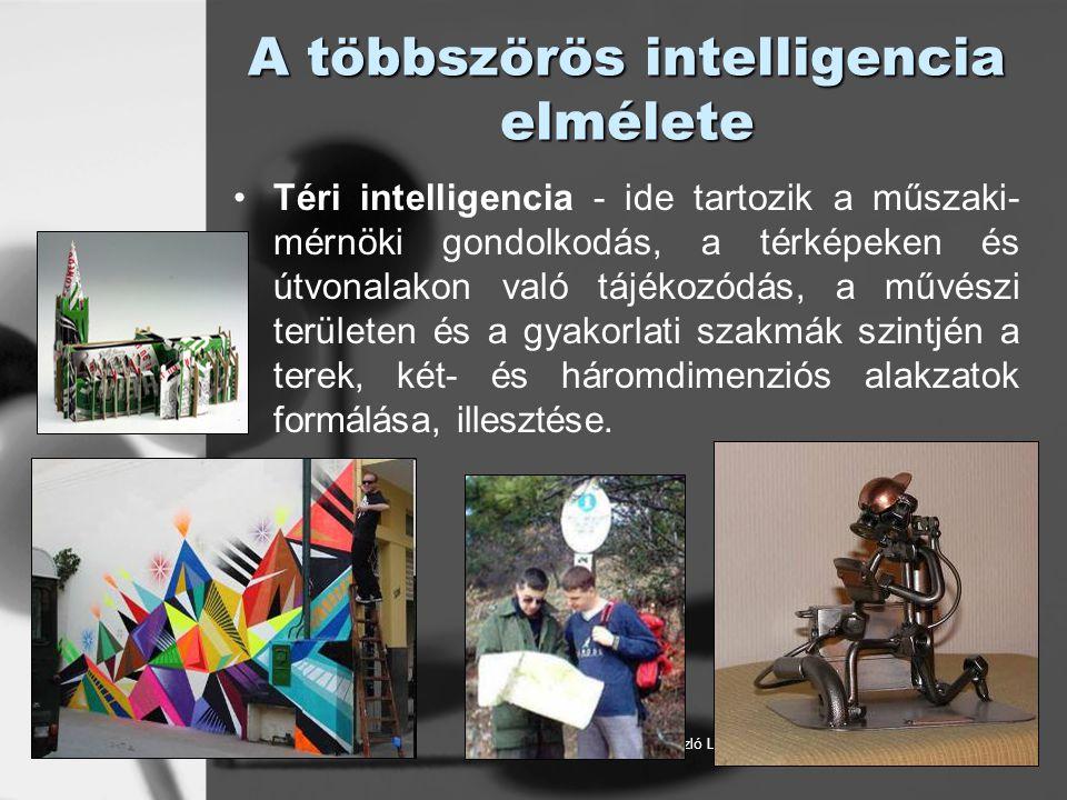 © László Laura A többszörös intelligencia elmélete Téri intelligencia - ide tartozik a műszaki- mérnöki gondolkodás, a térképeken és útvonalakon való