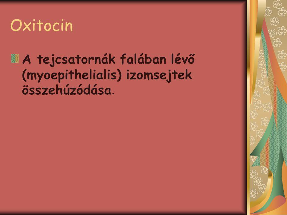 Oxitocin A tejcsatornák falában lévő (myoepithelialis) izomsejtek összehúzódása.