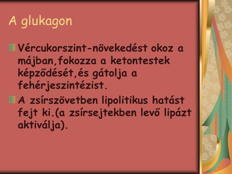 Hiposzekréció Cukorbajt(diabéteszt) idéz elő,amelynek jellemzői: a hiperglikémia(a vér szőlőcukor-tartalmának növekedése) glükózuria(cukorvizelés) poliuria(nagy mennyisegű vizeletürítés) polifágia(fokozott étvágy) polidipszia(nagy mennyisegű folyadék fogyasztása) testsúlyvesztés,ketontestek halmozódása az idegrendszerben,amelyet cukorbajos ájulás(diabéteszes kóma)követ.