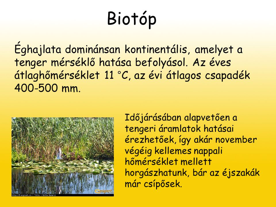 Biocönózis Összesen 1456 állatfaj lakja a vidéket.