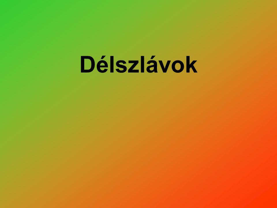 Délszlávok