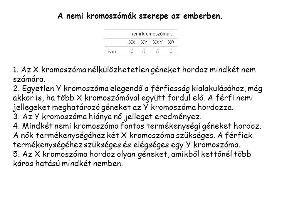 1.Az X kromoszóma nélkülözhetetlen géneket hordoz mindkét nem számára.
