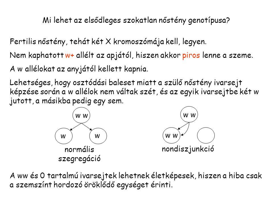 Mi lehet az elsődleges szokatlan nőstény genotípusa.