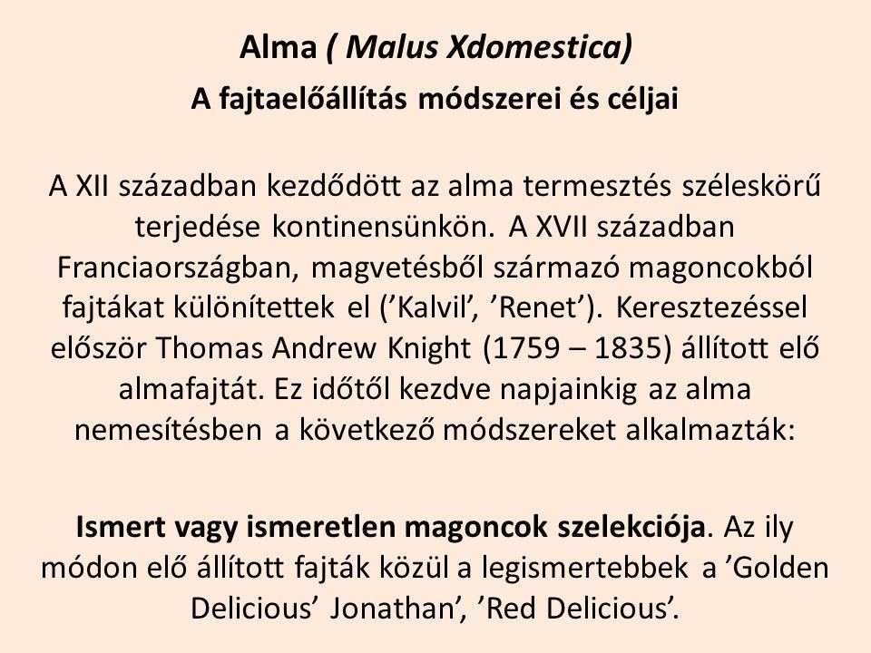 Alma ( Malus Xdomestica) A fajtaelőállítás módszerei és céljai A XII században kezdődött az alma termesztés széleskörű terjedése kontinensünkön. A XVI