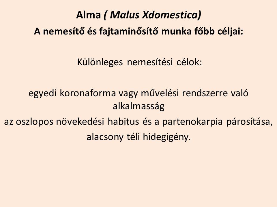 Alma ( Malus Xdomestica) A nemesítő és fajtaminősítő munka főbb céljai: Különleges nemesítési célok: egyedi koronaforma vagy művelési rendszerre való