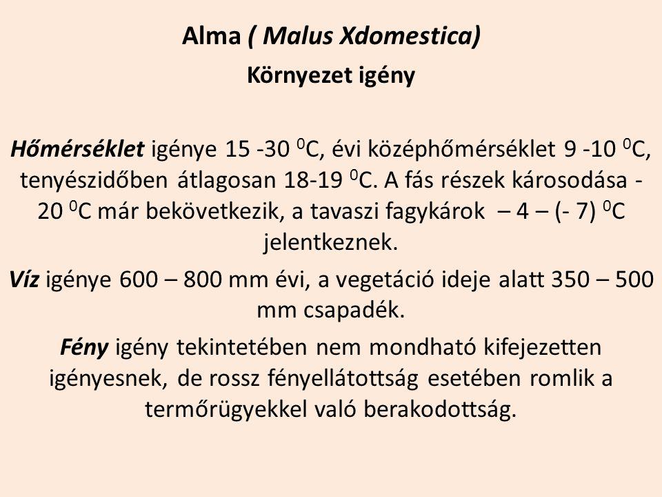 Alma ( Malus Xdomestica) Környezet igény Hőmérséklet igénye 15 -30 0 C, évi középhőmérséklet 9 -10 0 C, tenyészidőben átlagosan 18-19 0 C. A fás része
