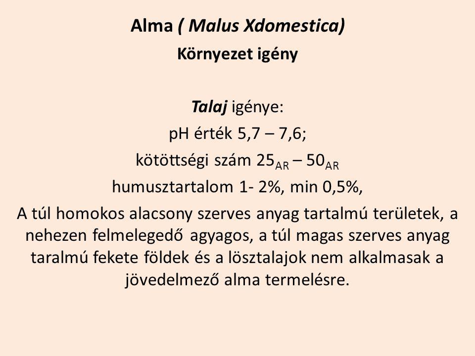 Alma ( Malus Xdomestica) Környezet igény Talaj igénye: pH érték 5,7 – 7,6; kötöttségi szám 25 AR – 50 AR humusztartalom 1- 2%, min 0,5%, A túl homokos