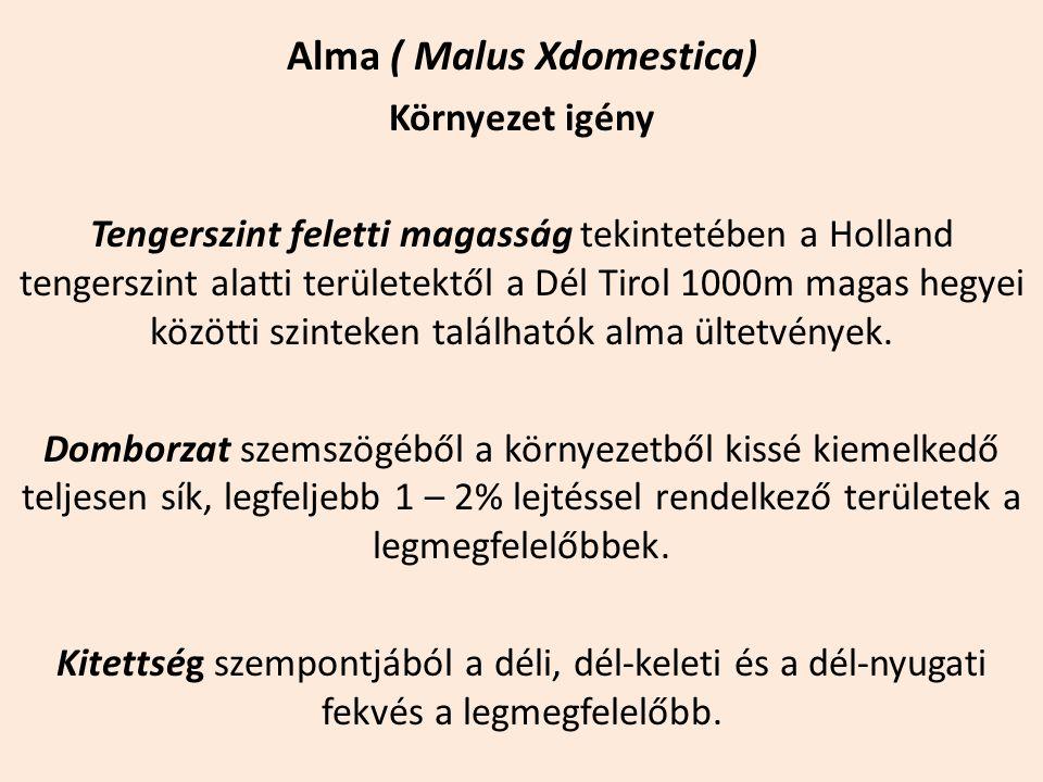 Alma ( Malus Xdomestica) Környezet igény Tengerszint feletti magasság tekintetében a Holland tengerszint alatti területektől a Dél Tirol 1000m magas h