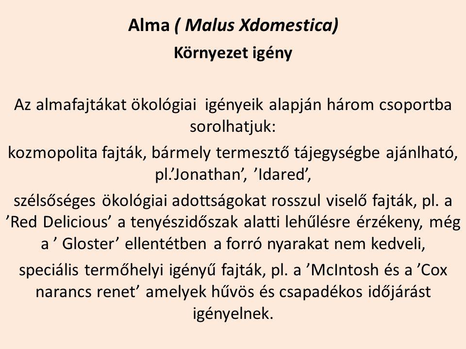 Alma ( Malus Xdomestica) Környezet igény Az almafajtákat ökológiai igényeik alapján három csoportba sorolhatjuk: kozmopolita fajták, bármely termesztő