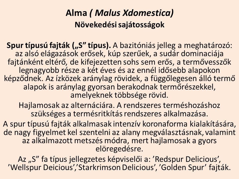 """Alma ( Malus Xdomestica) Növekedési sajátosságok Spur típusú fajták (""""S"""" típus). A bazitóniás jelleg a meghatározó: az alsó elágazások erősek, kúp sze"""