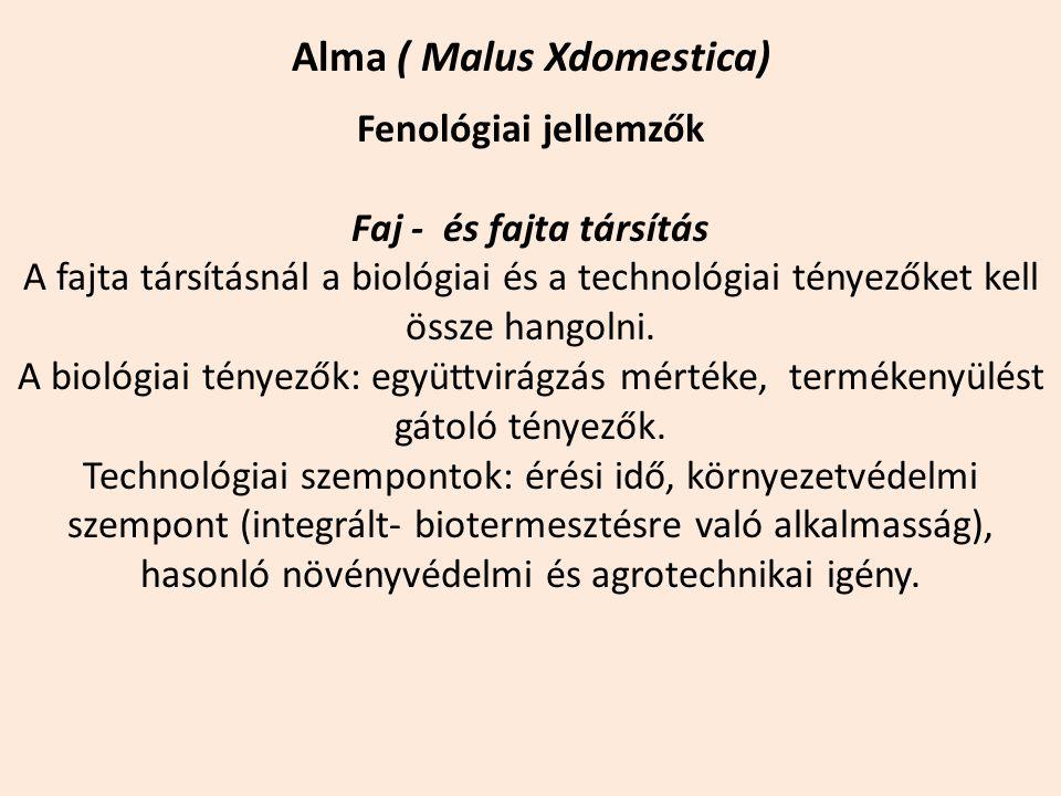 Alma ( Malus Xdomestica) Fenológiai jellemzők Faj - és fajta társítás A fajta társításnál a biológiai és a technológiai tényezőket kell össze hangolni