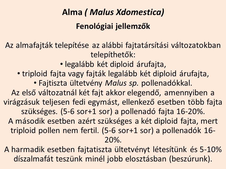 Alma ( Malus Xdomestica) Fenológiai jellemzők Az almafajták telepítése az alábbi fajtatársítási változatokban telepíthetők: legalább két diploid árufa