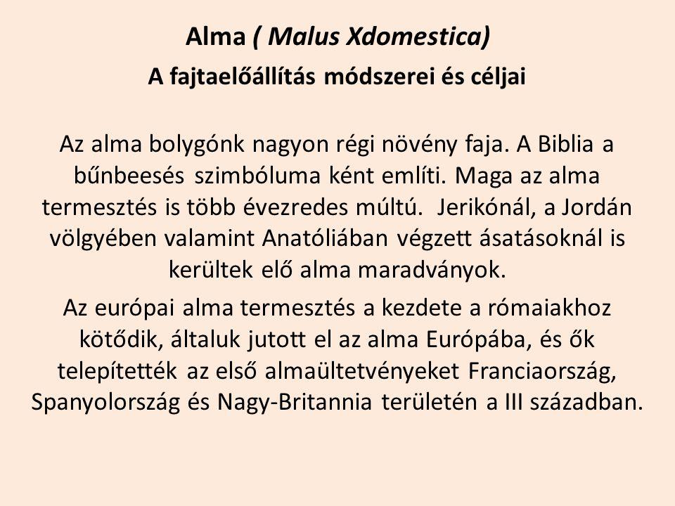 Alma ( Malus Xdomestica) A fajtaelőállítás módszerei és céljai Az alma bolygónk nagyon régi növény faja. A Biblia a bűnbeesés szimbóluma ként említi.