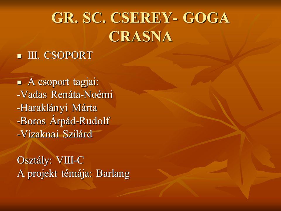 GR. SC. CSEREY- GOGA CRASNA III. CSOPORT III. CSOPORT A csoport tagjai: A csoport tagjai: -Vadas Renáta-Noémi -Haraklányi Márta -Boros Árpád-Rudolf -V