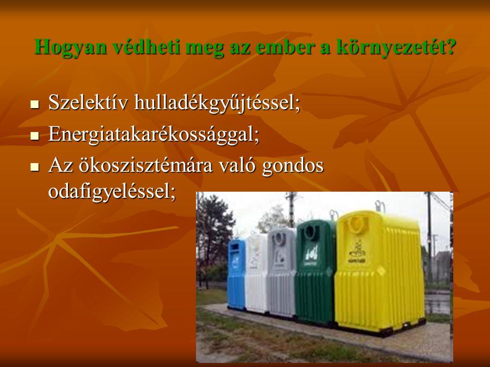 Hogyan védheti meg az ember a környezetét? Szelektív hulladékgyűjtéssel; Szelektív hulladékgyűjtéssel; Energiatakarékossággal; Energiatakarékossággal;