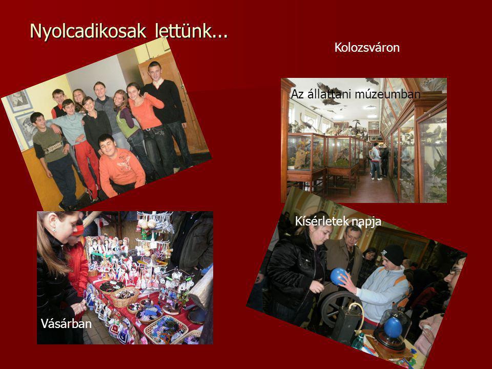 Nyolcadikosak lettünk... Az állattani múzeumban Vásárban Kísérletek napja Kolozsváron