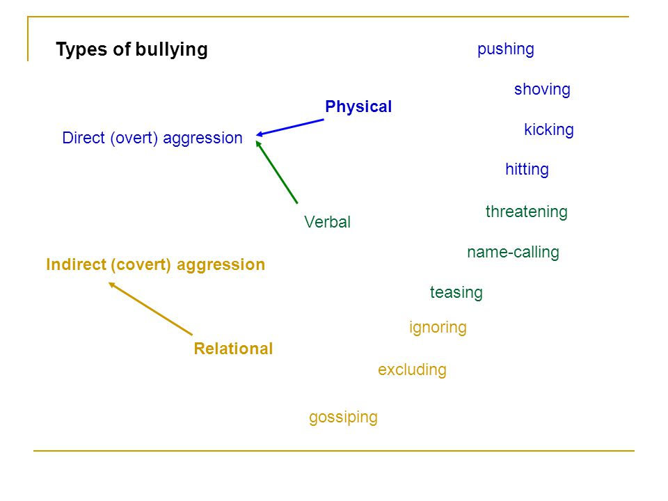 How did research on bullying start.