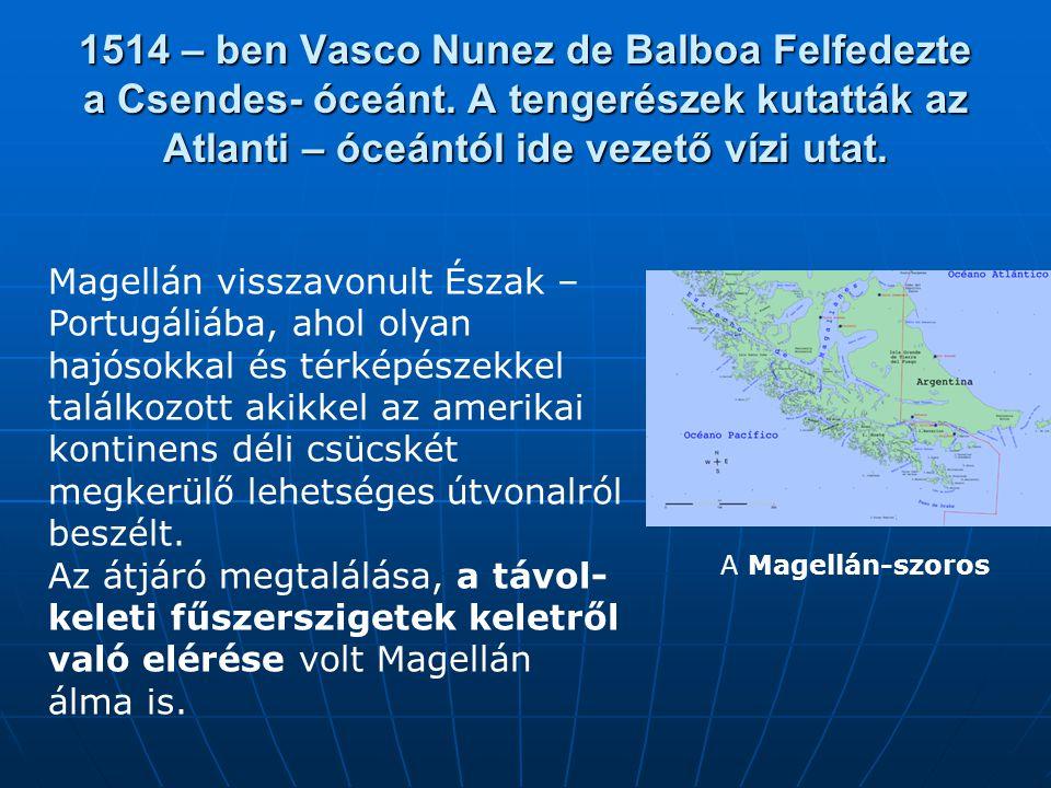 Magellán visszavonult Észak – Portugáliába, ahol olyan hajósokkal és térképészekkel találkozott akikkel az amerikai kontinens déli csücskét megkerülő