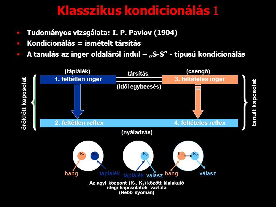 """Klasszikus kondicionálás 1 Tudományos vizsgálata: I. P. Pavlov (1904) Kondicionálás = ismételt társítás A tanulás az inger oldaláról indul – """"S-S"""" - t"""