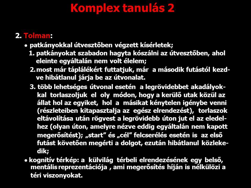 Komplex tanulás 2 2. Tolman:  patkányokkal útvesztőben végzett kísérletek; 1. patkányokat szabadon hagyta kószálni az útvesztőben, ahol eleinte egyál