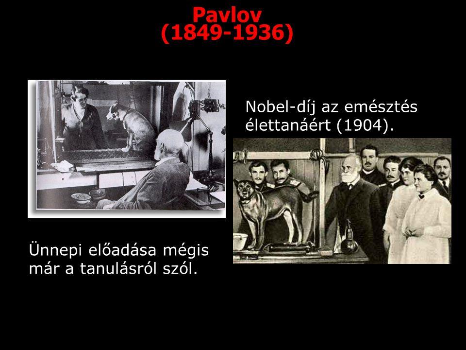 Pavlov (1849-1936) Nobel-díj az emésztés élettanáért (1904). Ünnepi előadása mégis már a tanulásról szól.