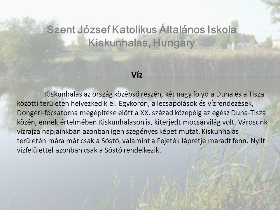 Víz Az első mintavételi helyünk a Sóstó: A város északi részén elhelyezkedő szikes tó a Tisza vízgyűjtő területéhez tartozik.