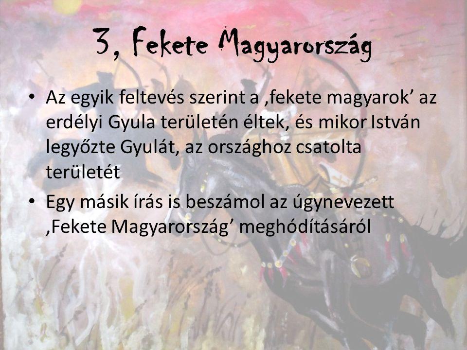 3, Fekete Magyarország Az egyik feltevés szerint a 'fekete magyarok' az erdélyi Gyula területén éltek, és mikor István legyőzte Gyulát, az országhoz c