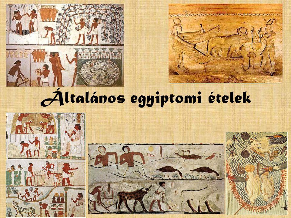 Általános egyiptomi ételek