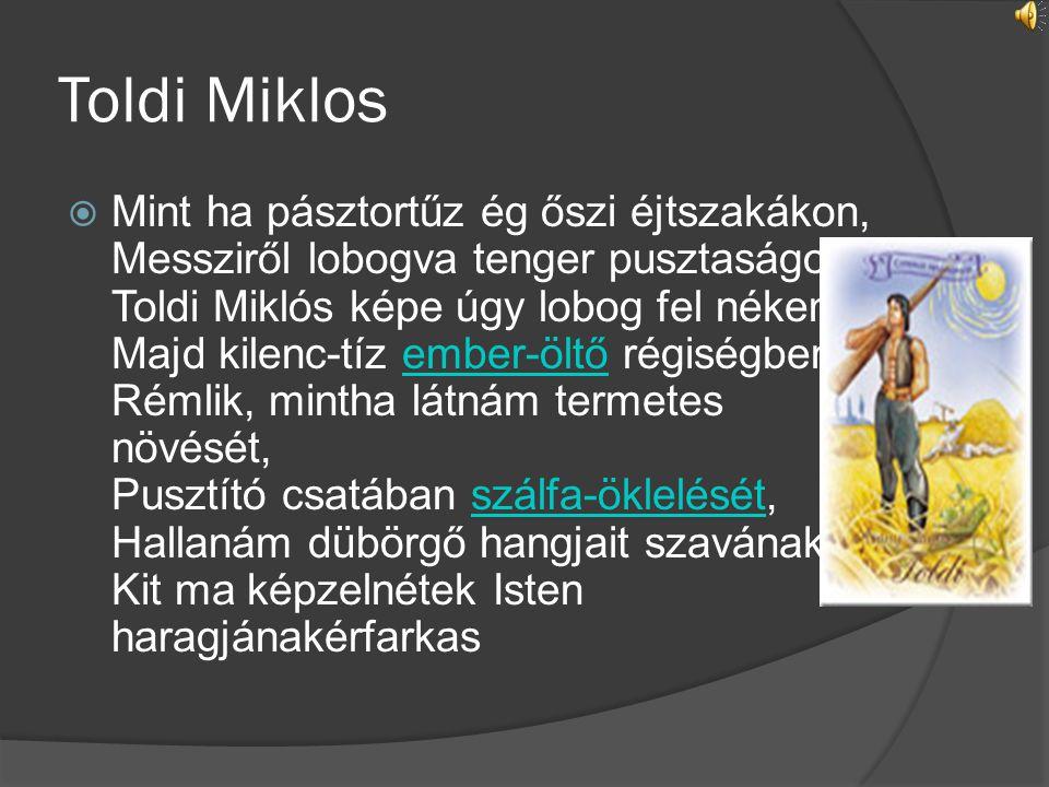 Toldi Miklos  Mint ha pásztortűz ég őszi éjtszakákon, Messziről lobogva tenger pusztaságon: Toldi Miklós képe úgy lobog fel nékem Majd kilenc-tíz emb