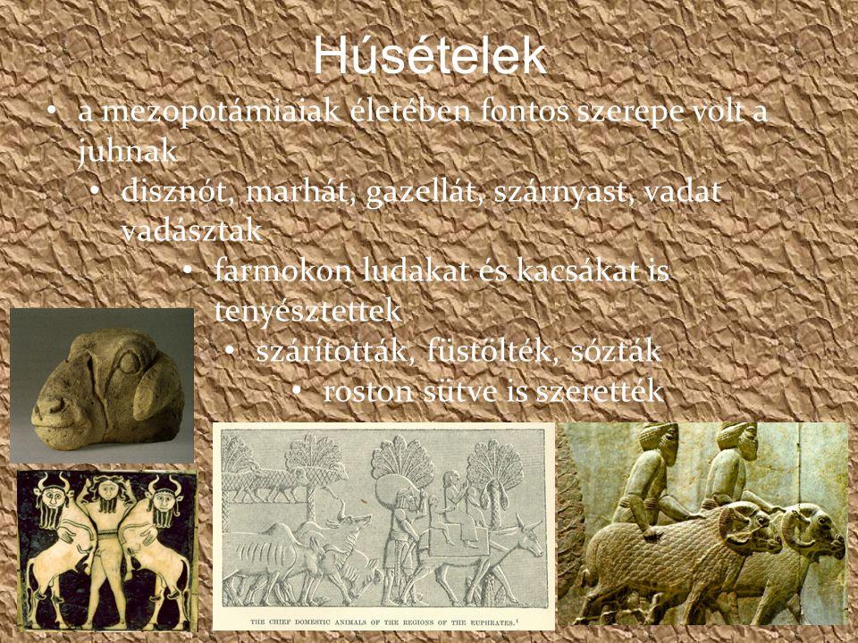 Húsételek a mezopotámiaiak életében fontos szerepe volt a juhnak disznót, marhát, gazellát, szárnyast, vadat vadásztak farmokon ludakat és kacsákat is tenyésztettek szárították, füstölték, sózták roston sütve is szerették