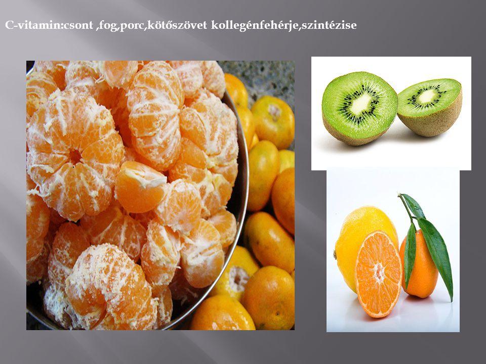 B-vitamin:szénhidrát anyagcsere zsirsavszintézis