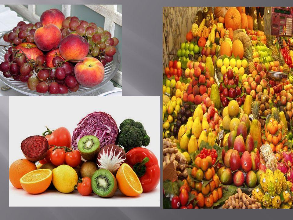 A táplálékaink legfontosabb összetevői a fehérjék, a szénhidrátok, a zsírok, a vitaminok, az ásványi anyagok, valamint a víz