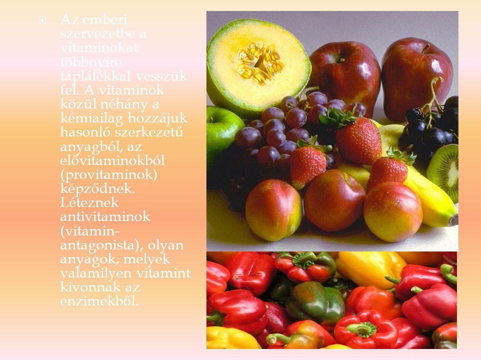 1.Zsírban oldódó vitaminok (lipovitaminok), 2.Vízben oldódó vitaminok