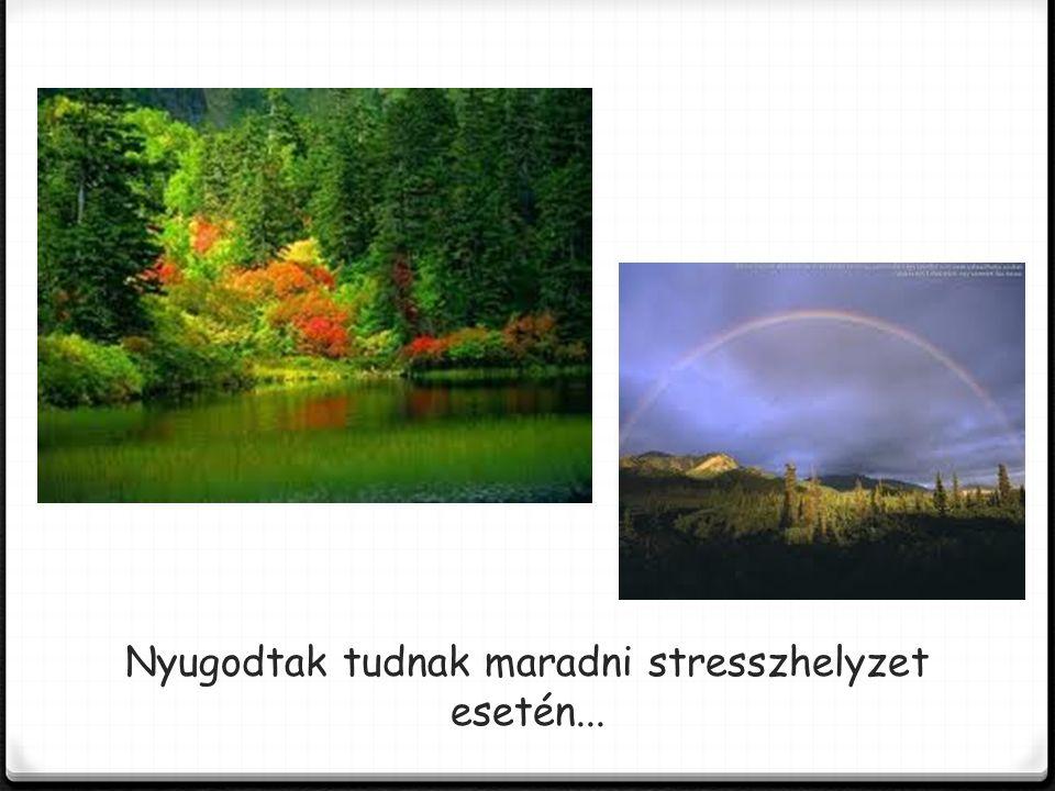 Nyugodtak tudnak maradni stresszhelyzet esetén...