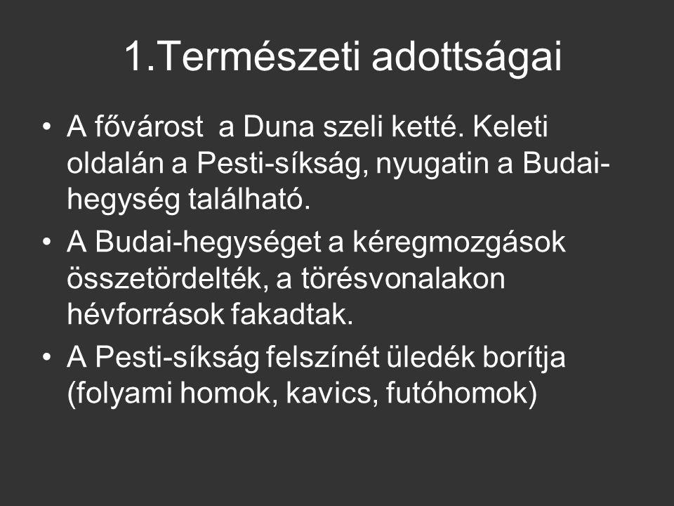 1.Természeti adottságai A fővárost a Duna szeli ketté. Keleti oldalán a Pesti-síkság, nyugatin a Budai- hegység található. A Budai-hegységet a kéregmo