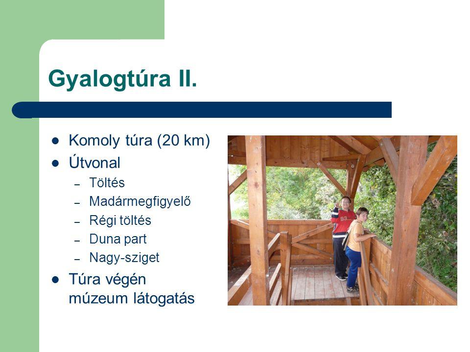 Gyalogtúra II. Komoly túra (20 km) Útvonal – Töltés – Madármegfigyelő – Régi töltés – Duna part – Nagy-sziget Túra végén múzeum látogatás
