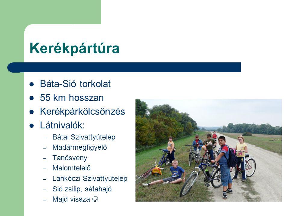Kerékpártúra Báta-Sió torkolat 55 km hosszan Kerékpárkölcsönzés Látnivalók: – Bátai Szivattyútelep – Madármegfigyelő – Tanösvény – Malomtelelő – Lankó