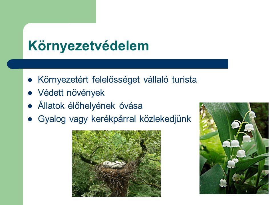 Környezetvédelem Környezetért felelősséget vállaló turista Védett növények Állatok élőhelyének óvása Gyalog vagy kerékpárral közlekedjünk