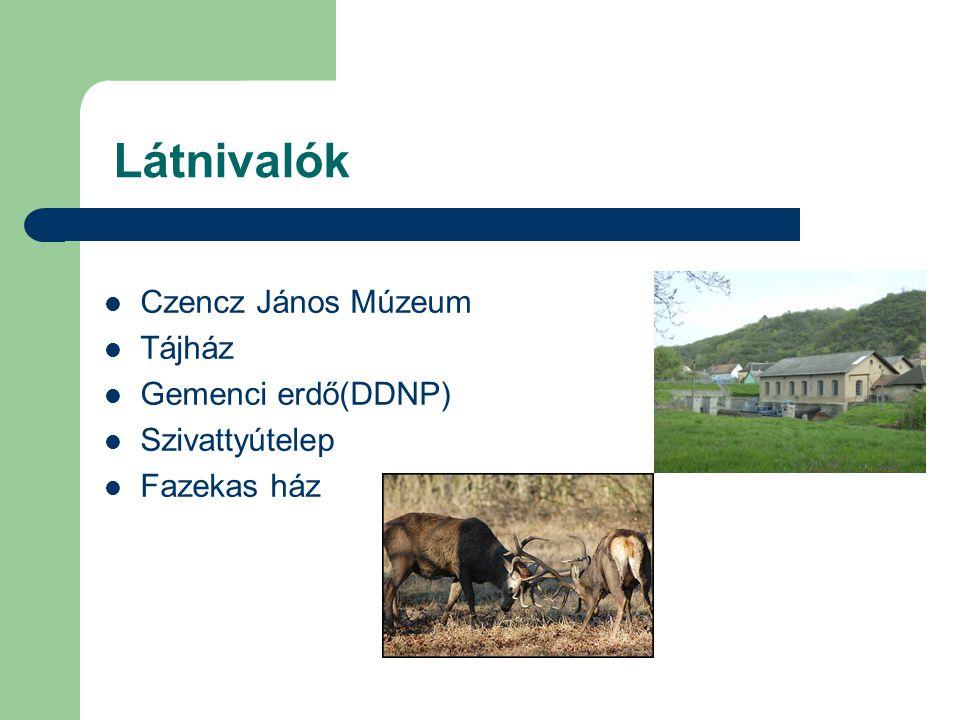 Látnivalók Czencz János Múzeum Tájház Gemenci erdő(DDNP) Szivattyútelep Fazekas ház