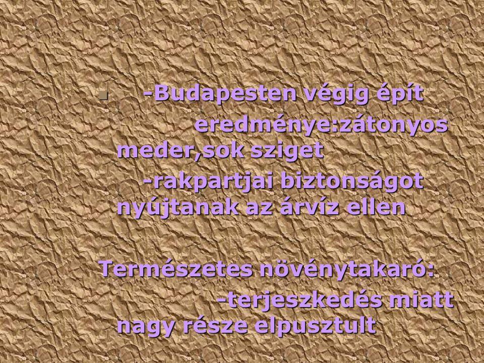 -Budapesten végig épít -Budapesten végig épít eredménye:zátonyos meder,sok sziget eredménye:zátonyos meder,sok sziget -rakpartjai biztonságot nyújtanak az árvíz ellen -rakpartjai biztonságot nyújtanak az árvíz ellen Természetes növénytakaró: -terjeszkedés miatt nagy része elpusztult -terjeszkedés miatt nagy része elpusztult