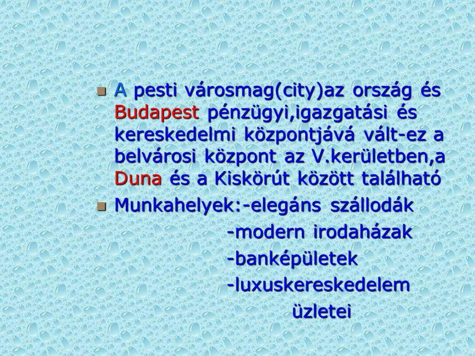 A pesti városmag(city)az ország és Budapest pénzügyi,igazgatási és kereskedelmi központjává vált-ez a belvárosi központ az V.kerületben,a Duna és a Kiskörút között található A pesti városmag(city)az ország és Budapest pénzügyi,igazgatási és kereskedelmi központjává vált-ez a belvárosi központ az V.kerületben,a Duna és a Kiskörút között található Munkahelyek:-elegáns szállodák Munkahelyek:-elegáns szállodák -modern irodaházak -modern irodaházak -banképületek -banképületek -luxuskereskedelem -luxuskereskedelem üzletei üzletei