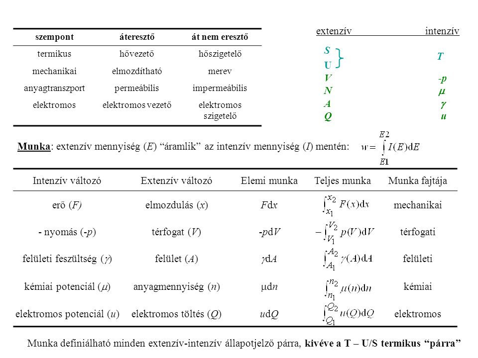 szempontáteresztőát nem eresztő termikushővezetőhőszigetelő mechanikaielmozdíthatómerev anyagtranszportpermeábilisimpermeábilis elektromoselektromos vezetőelektromos szigetelő extenzív intenzív S U V -p N   A   Q u T Munka: extenzív mennyiség (E) áramlik az intenzív mennyiség (I) mentén: Intenzív változóExtenzív változóElemi munkaTeljes munkaMunka fajtája erő (F)elmozdulás (x)FdxFdxmechanikai - nyomás (-p)térfogat (V)-pdV-pdVtérfogati felületi feszültség (  ) felület (A) dAdA felületi kémiai potenciál (  ) anyagmennyiség (n) dndn kémiai elektromos potenciál (u)elektromos töltés (Q)udQudQelektromos Munka definiálható minden extenzív-intenzív állapotjelző párra, kivéve a T – U/S termikus párra