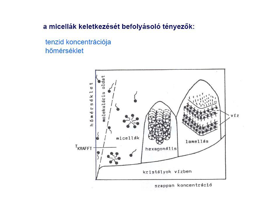 Krafft pont: az a hőmérséklet, mely fölött megindul a micellaképződés (alatta a tenzid már a cmc alatt kicsapódik)