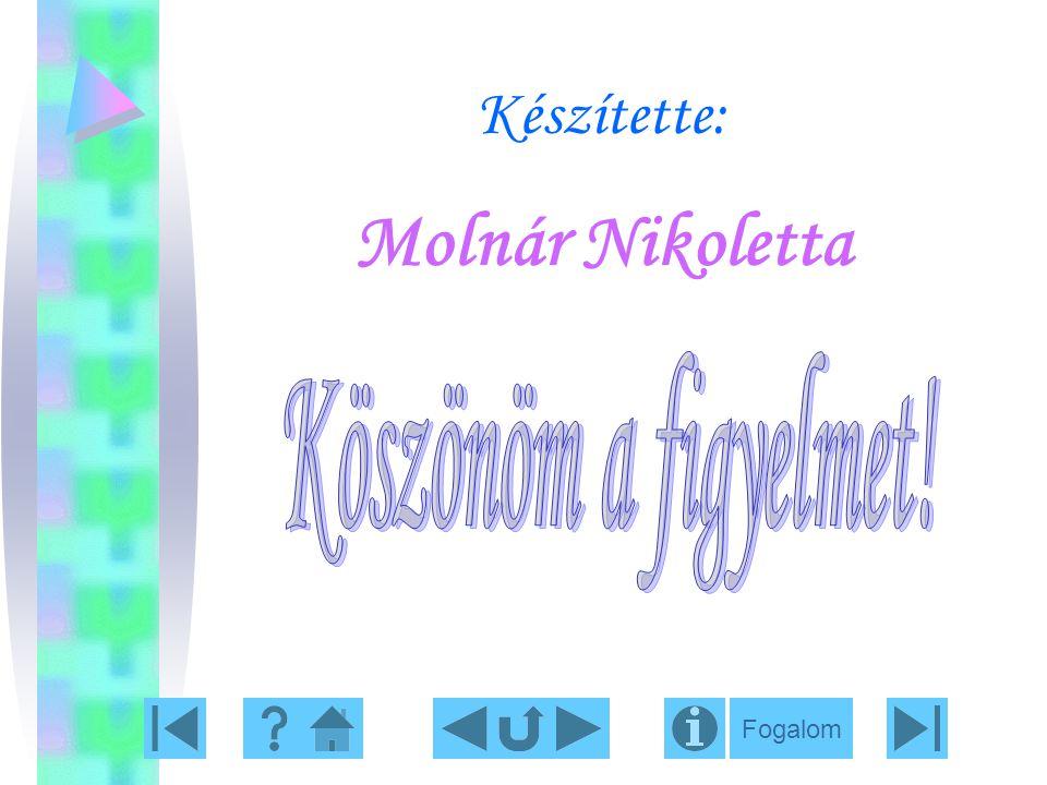 Készítette: Molnár Nikoletta Fogalom