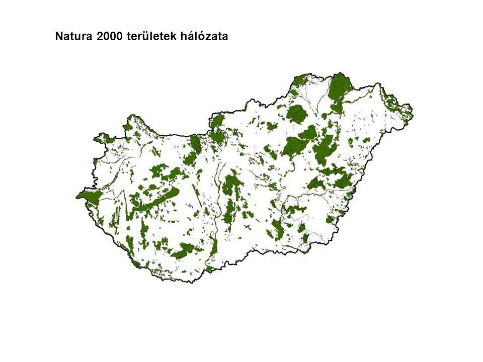 Felhasznált források Szakirodalom: 1.Ángyán J.- Fésűs I.- Podmaniczky L.- Tar F.- Vajnáné Madarassy A.: 1999.
