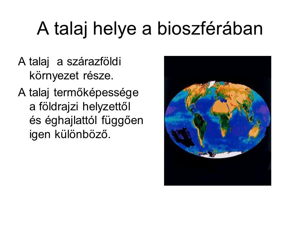 A talaj helye a bioszférában A talaj a szárazföldi környezet része. A talaj termőképessége a földrajzi helyzettől és éghajlattól függően igen különböz